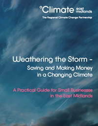 Climate Change Business Guide