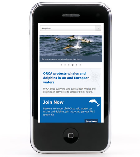 ORCA responsive website