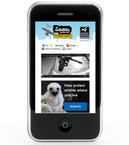 peregrine Camera website on the iPhone