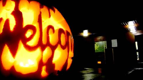 Halloween pumpkin at Foxglove Covert