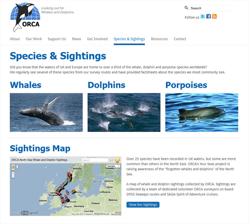 ORCA website - Species & Sightings