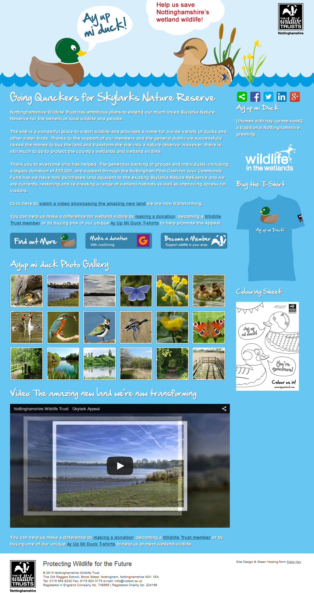 Ay Up Mi Duck Responsive promotional website for the Skylarks Nature Reserve