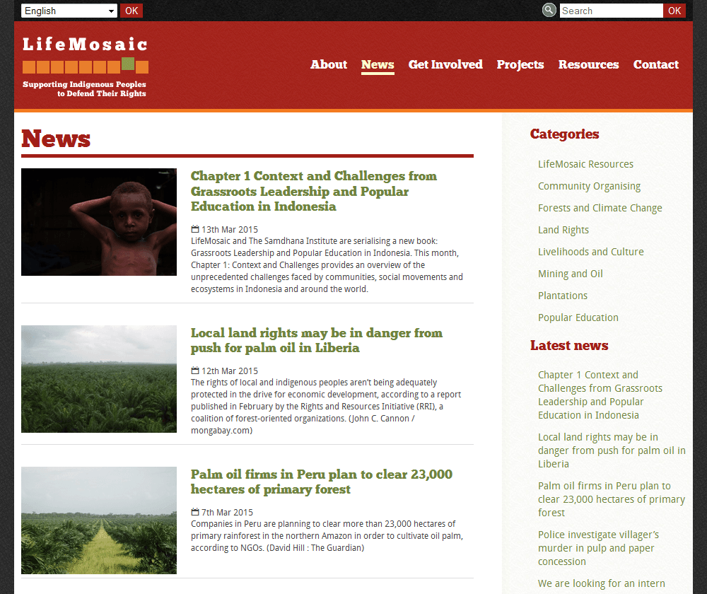 LifeMosaic News Section