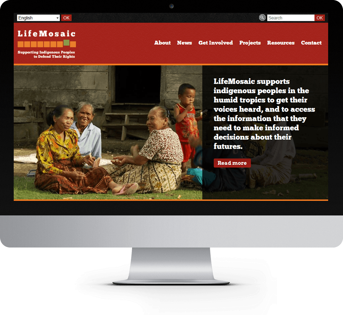 LifeMosaic website