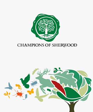 Champions of Sherwood