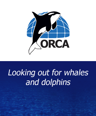 ORCA - Protecting Whales and Dolphins