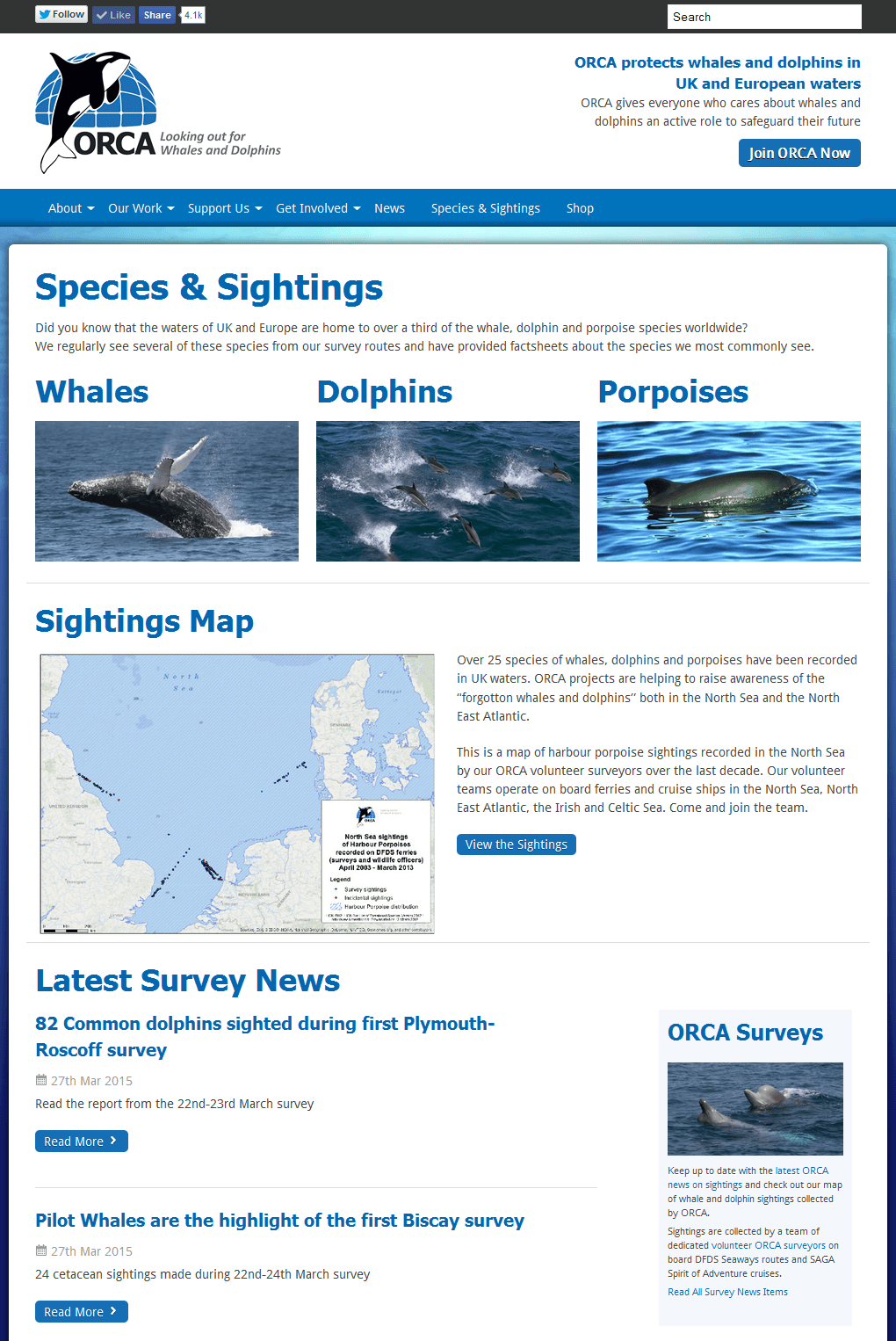 ORCA - Protecting Whales and Dolphins Sightings map with a whale and dolphin species directory