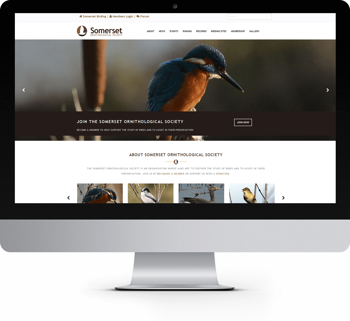 Somerset Ornithological Society website
